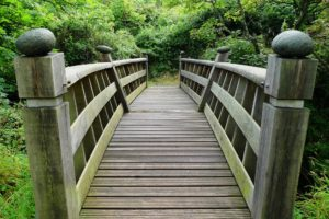 Un pont vers Apprivoiser la mort