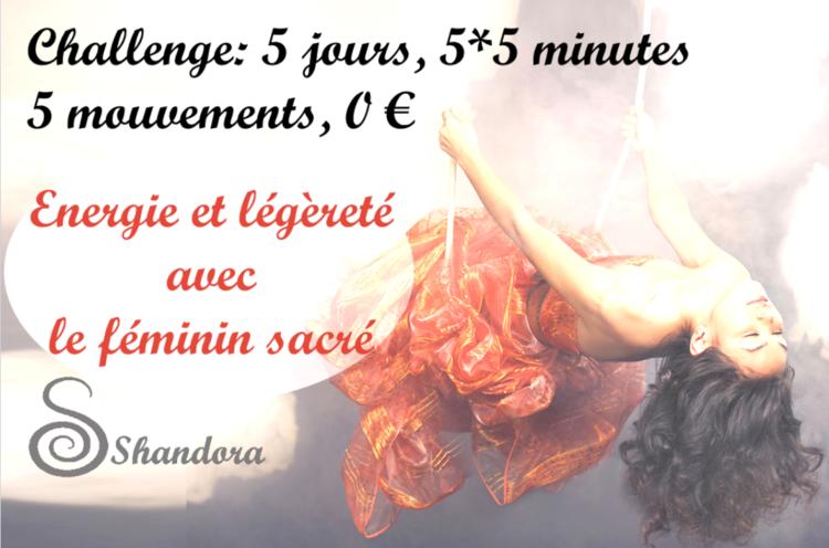 Shandora-challenge