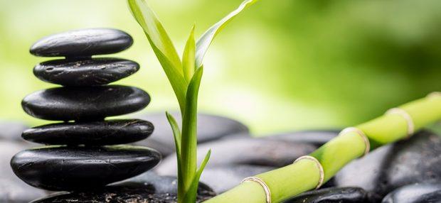 zen stones - feng shui