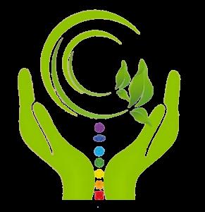 Logo NewParadigm