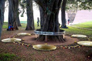 Auroville & Sri Aurobindo 4