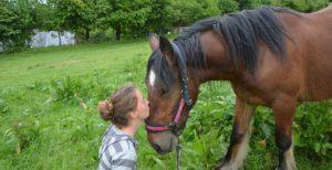 MOUVEMENTS ET MÉDITATION PLEINE CONSCIENCE (avec les chevaux) @ La Hulpe