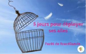 RÉVEILLEZ VOS 4 HÉROS INTÉRIEURS À BROCÉLIANDE @ Brocéliande (Bretagne)